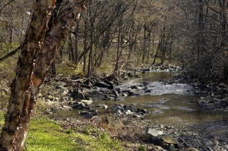 O Leakin Park, onde o corpo foi encontrado. Quase nada de Twin Peaks, né? (Reprodução/TRBMG)